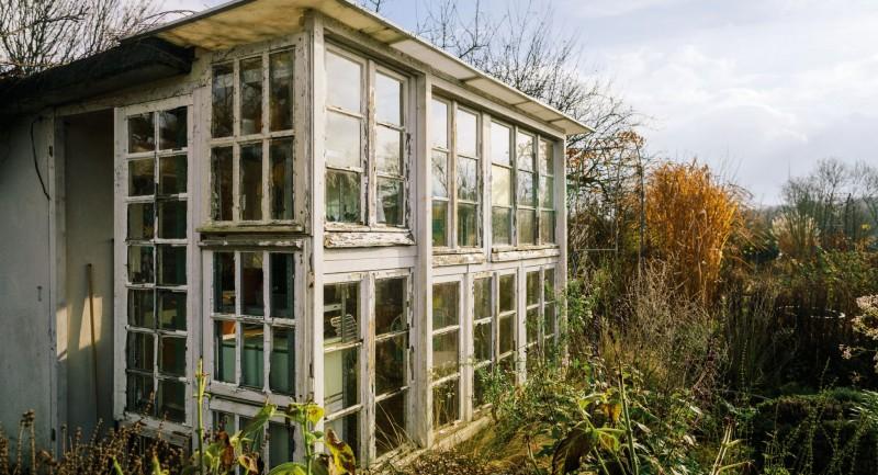 auch pflanzen brauchen ein dach ber dem kopf wohnen. Black Bedroom Furniture Sets. Home Design Ideas